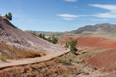 Painted Hills (16)