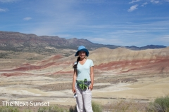 Painted Hills (6)