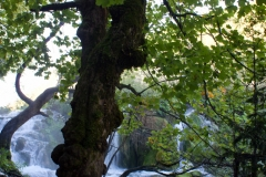 Plitvice lakes national park (10)
